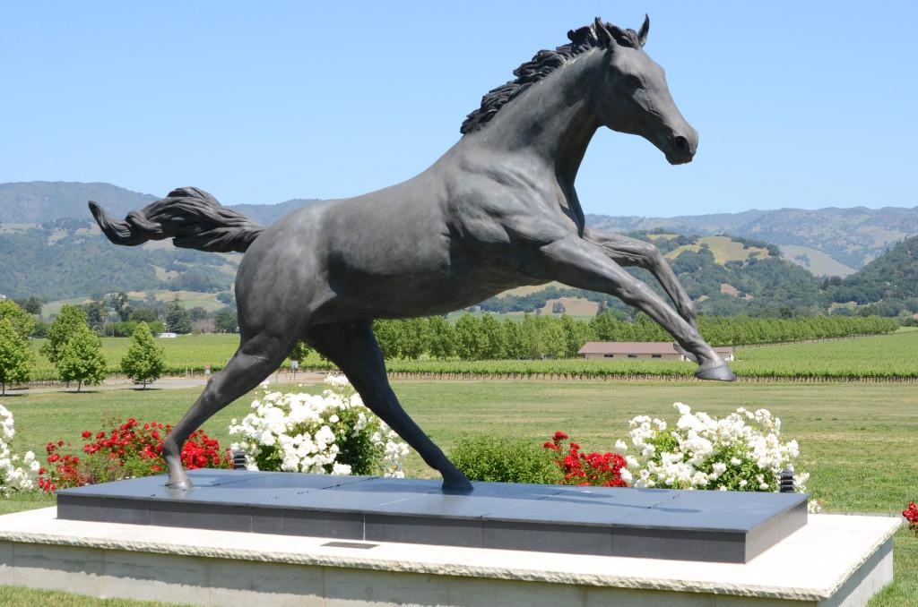 sonoma horse