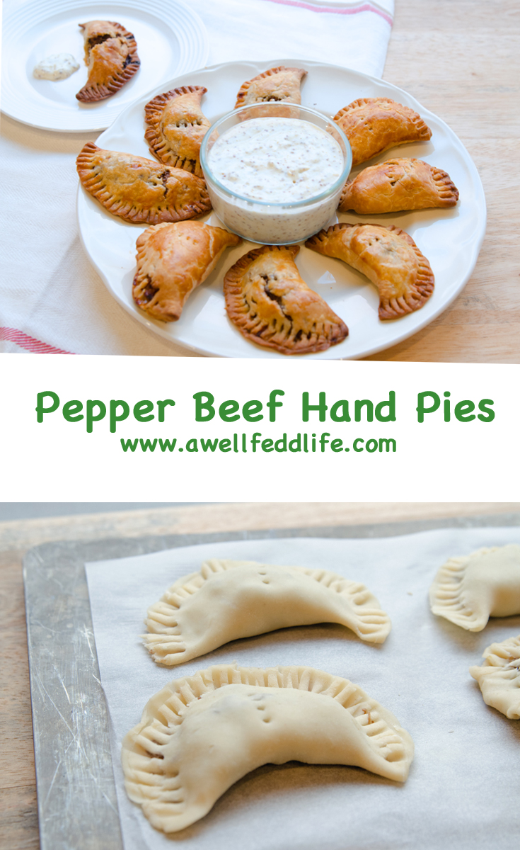 Beef Hand Pies with Dipping Sauce